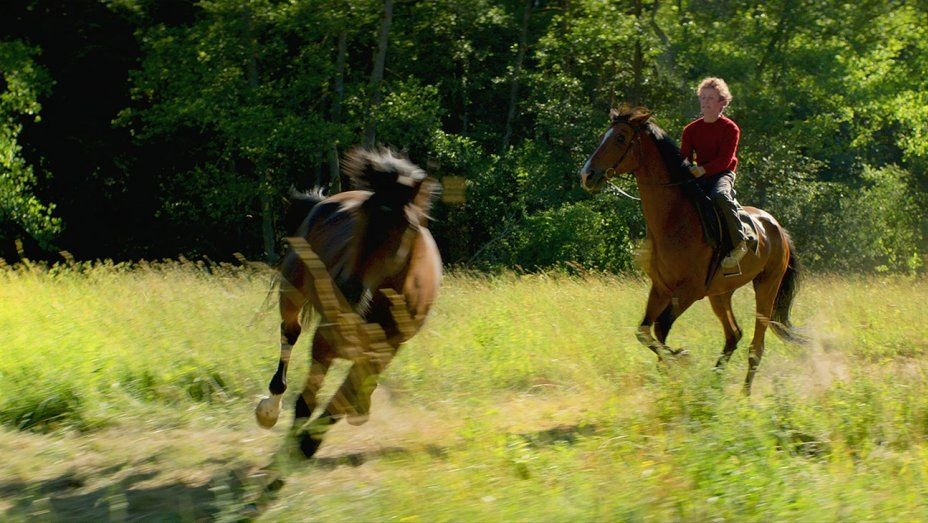 out_stealing_horses-publicity_still-h_2019.jpg